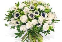 Fleurop * Winterblumen