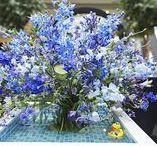 Fleurop * Deutsche Meisterschaft der Floristen
