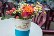 Fleurop * Lonely Bouquet Day / Bei der charmanten Aktion werden kleine Sträußchen an öffentlichen Plätzen ausgesetzt, um Menschen eine unverhoffte Freude zu bereiten.