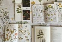 Botany/ books / Botanical, vintage books