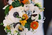 Dream Wedding / by Morgan Derby