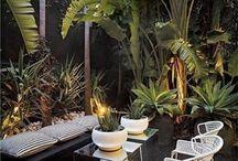 Our Bali Garden