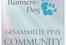 Gesammelte Pins: Community
