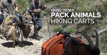 HBW Videos / Learn more about the Honey Badger Wheel (HBW). The HBW is a hiking cart, kayak cart, hiking stroller, hunting cart, prepper cart, and fishing cart. It is the all-terrain mechanical advantage.