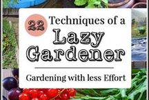 Garden / Gardening ideas, tips, how-to, DIY and gardening with kids.