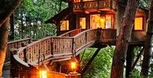 Tree Houses / Real and imaginary...