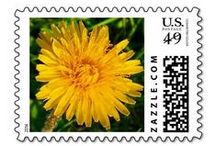 Stamp Ennui / Postage stamps with hearts. And flowers.  Perfect for everyday use or for special occasions, like showers and weddings.