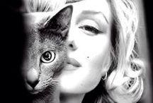 Women Who Love Cats