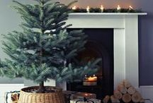 Tis the Season.... / All about Christmas
