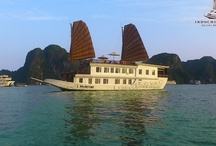 Indochina Sails / Backed by over ten years experience hosting international guests on the tranquil waters of Halong Bay, Indochina Sails has set a new standard for luxury cruising. The first company to offer overnight cruises on the bay, we are now widely known as the number one choice for discerning travellers. Our fleet of six newly built wooden junks are designed in time-honoured traditional style, with contemporary and luxurious cabins and facilities.