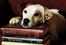 Books / by Anne Hufflepuff