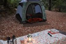 Camping / by Teresa Justman Hovden
