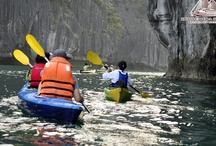 """Exploring Halong Bay by Kayaking / Kayaking_this is a unique opportunity to see some of Halong Bay's most interesting scenery while being as close to the sea as possible. Travelers can paddle into peaceful lakes surrounded by limestone mountains and through amazing caves. Indochina sails- a luxury cruise in Halong Bay also offers a tour one of the bay's largest and most spectacular indoor caves, """"Sung Sot"""" or """"Surprise Cave"""". Experiencing the placid and peaceful lagoons bringing travelers as close to the wildlife of Halong Bay."""