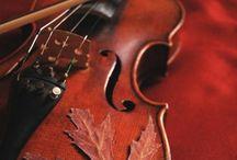 Sweet Strings / by Dr. Linda Welker