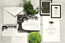 Paper Styling / by Posh Petals & Pearls