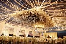 Reception Details / by Posh Petals & Pearls