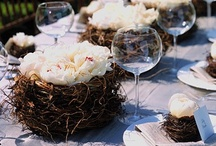 Rustic Theme / by Posh Petals & Pearls