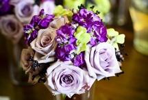 Purple Color Scheme / by Posh Petals & Pearls