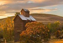 Barns / by Dr. Linda Welker
