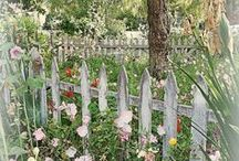 fence / by Anne Vaught