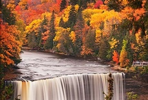 Autumn Beauty / I have always enjoyed the changes of the seasons and Autumn with its changes in color is one of the most vibrant reasons...enjoy!!! / by ~Singing A New Song~