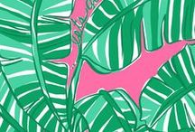 Preppy Prints and Patterns / by Izzy Laundrie