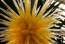 ART Chihuly Glass / by Linda Welker