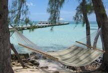Caribbean  / by Dena Newman