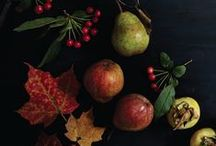 """Thanksgiving Recipes / """"Autumn gives us permission to feast and relax—ripe with sweet root vegetables, inspiring leaf patterns, and just enough chill to seek a little snuggling. This is the season of reflection and an opportunity to return to the kitchen. The two complement each other well, allowing the momentum of summer's labor to culminate in recipes to celebrate harvest.""""  —from Sourdough by Sarah Owens http://www.roostbooks.com/sourdough.html"""