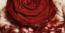 Rosier / Kent | nulla rosa sine spina