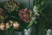 Flowers & Greenery / Green inspiration!