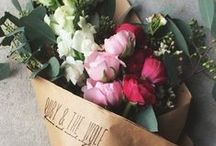 f l o w e r s / flowers, lots and lots of flowers