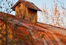 In the Barn / Rustic weddings / by LeeAnnie Pie