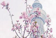 Corée Voyage / Collection d'idées et d'inspiration pour un voyage en Corée.