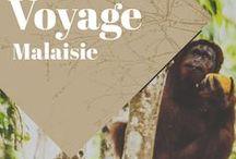 Malaisie Voyage / Collection d'idées et d'inspiration pour un voyage au Japon. Découvrez les bons plans et bonnes adresses, mais aussi ses plus beaux paysages, villes, sa nature...