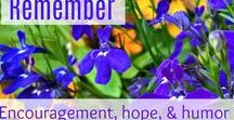 Theresa Boedeker's Blog / Encouragement and hope for your journey; tied up with a little humor