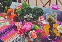 entertaining, parties & occasions. / by Libby Verret