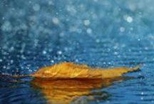 Art of Photography / http://121clicks.com/