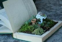 Terrariums & Mini Gardens