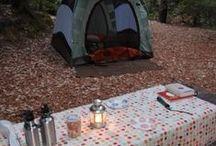 Camping / by Kirstin Tesner