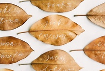 Wedding/Catering Ideas / Always looking for original ideas to share with family, friends, or a future bride wanting a little inspiration for their special day. / by Gina Guthrie-- Bocca Felice