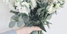 // Bloom & Wild / Beautiful blooms, perfect petals, fabulous flowers! #flowerstoyourdoorstep with @bloomandwild