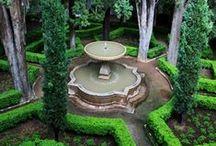 Gardening Galore / by Diana Holcombe