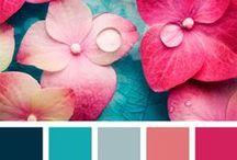 Color schemes - kleuren paletten / Wat past eigenlijk leuk bij elkaar en welke kleuren passen bij jou? Zoek hier een kleurenschema uit en weet zeker dat je interieur er geweldig uit komt te zien!