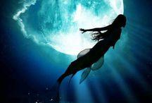 Sirène ! / Qui aimerai pas respirer sous l'eau ?