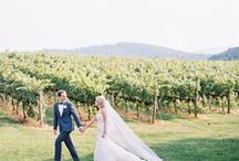 Vineyard and Tuscan Weddings / We are continuously inspired by rows and rows of grapevines and the beauty of a Tuscan sun late in the afternoon.