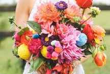 Inspiration - Bright Pops of Color