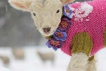 Knitting and Crochet / knit and crochet / by Sharon Marie