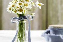 DIY-Ideen für den Frühling ♥ / Die schönsten Bastel- und Selbermach-Ideen für den Frühling  findest du hier auf einen Blick. Klick dich durch unsere DIY-Inspirationen.