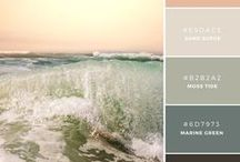 Color Palettes / How to choose your color palette: examples of beautiful combinations!